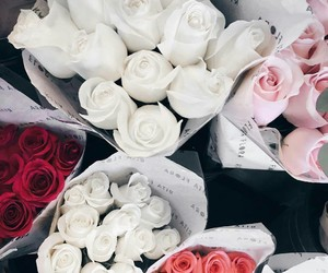 chic, rose, and love image