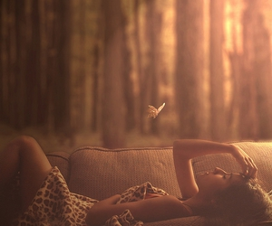 girl, butterfly, and forest image