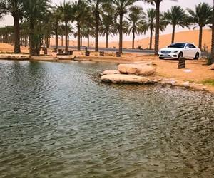 arab, arabic, and car image