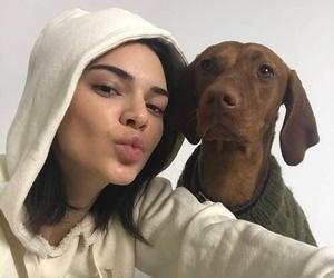 kendall jenner, dog, and model image