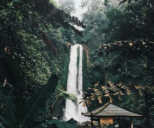travel, adventure, and tropical image