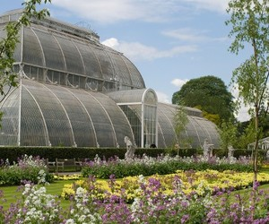 botanic garden, green house, and kew gardens image