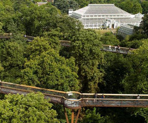 botanic garden, green house, and london image