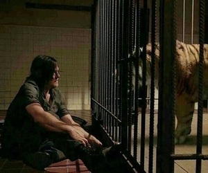 norman reedus, daryl dixon, and series and movies image