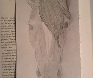 art, equestrian, and sketch image