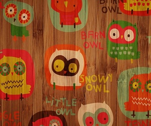 background, owl, and wallpaper image