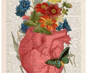 anatomia, corazón, and flores image