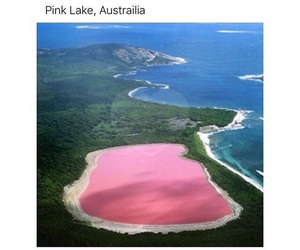 pink, australia, and lake image