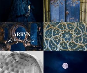 aesthetic, game of thrones, and a song of ice and fire image