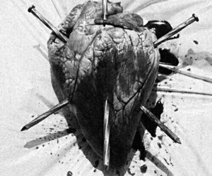 heart, blood, and black and white image