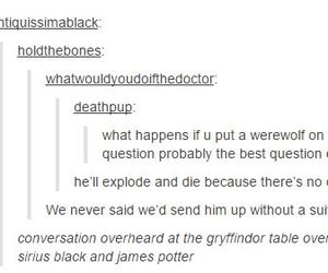 conversation, gryffindor, and harry potter image