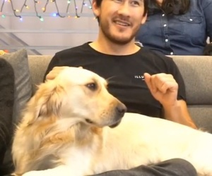 markiplier and chicaplier image