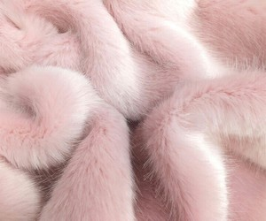 white and pink fur image