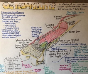 nursing, concept map, and osteomyelitis image