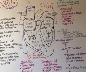 nursing, concept map, and cardiomyopathy image