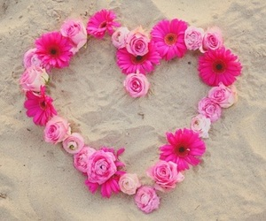 heart, beach, and pink image