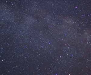 header and stars image