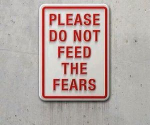 fear, quotes, and feed image