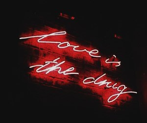 quote, love, and drugs image
