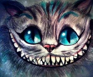 gato, fondo, and sonrisas image