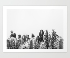 black and white, botanical, and cacti image
