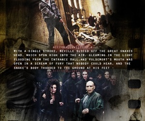 harry potter, neville longbottom, and the dark lord image