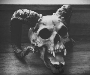 skull, black and white, and satan image