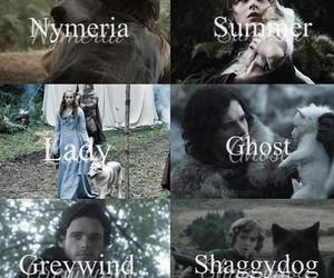 white wolf, jon snow, and sansa stark image