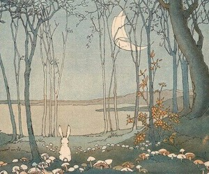 bunny, moon, and forest image