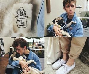 dog and troye sivan image