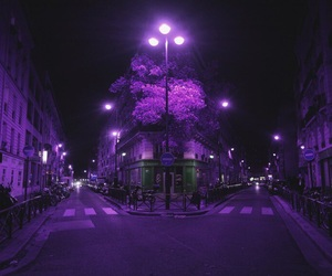 purple, lights, and night image