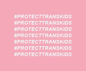human rights, protest, and trans image