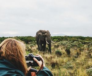 elephant, photography, and girl image