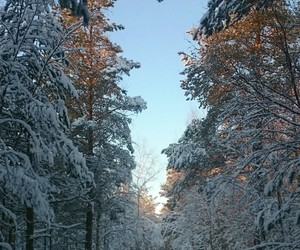 finland, snow, and Sunny image