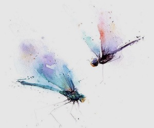 art, lovely, and water colour image