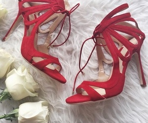 fashion, red, and roses image