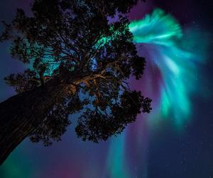 aurora borealis, beautiful, and color image