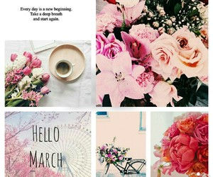 flower, hello, and march image