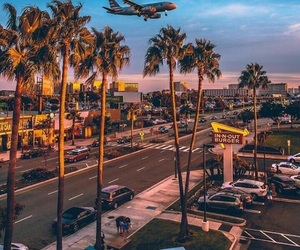 beautiful, in-n-out, and los angeles image