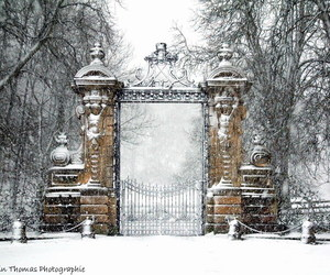 cold, gate, and park image