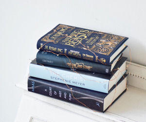 blue, book, and books image