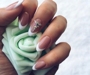 flowers, nails, and shine image