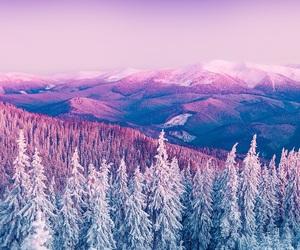 pretty, white, and purple image