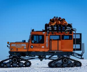 antarctica, photography, and wildlife image