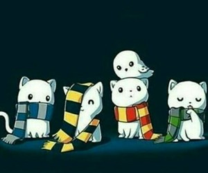 harry potter, cat, and gryffindor image