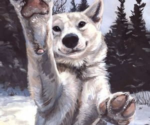 wolf, animals, and dog image