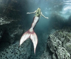 mermaid, fantasy, and pink image