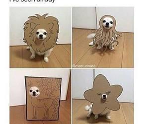animal, dog, and costume image