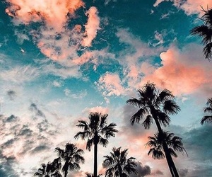 goals, palmtrees, and pink image