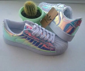 adidas, shoes, and cactus image
